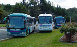 The Manions'' Coaches Fleet